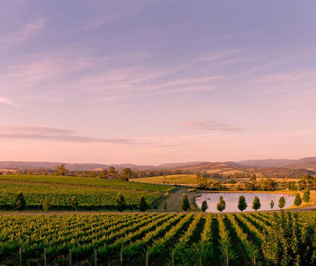 Oakridge Winery